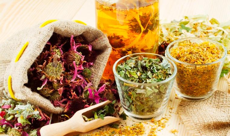 травы для лечения простатита