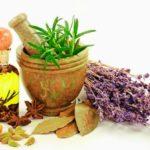 Фитотерапия: лечение с ее помощью