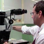 Патологоанатом, основные компетенции
