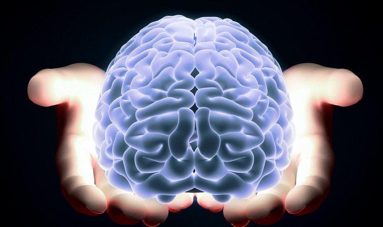 защита мозга