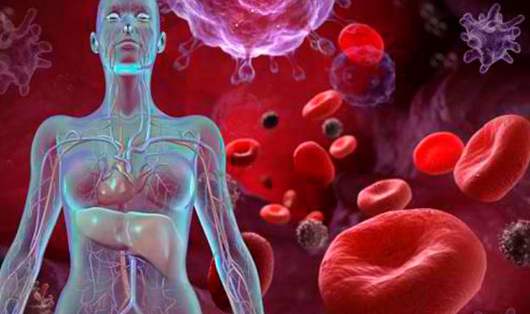 Патологии крови